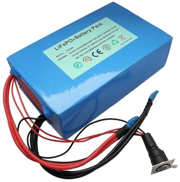 12V Komplettset: Leichtgewicht dank Lithium LiFePo4 - Akku inkl. 45A PCM + Ladegerät