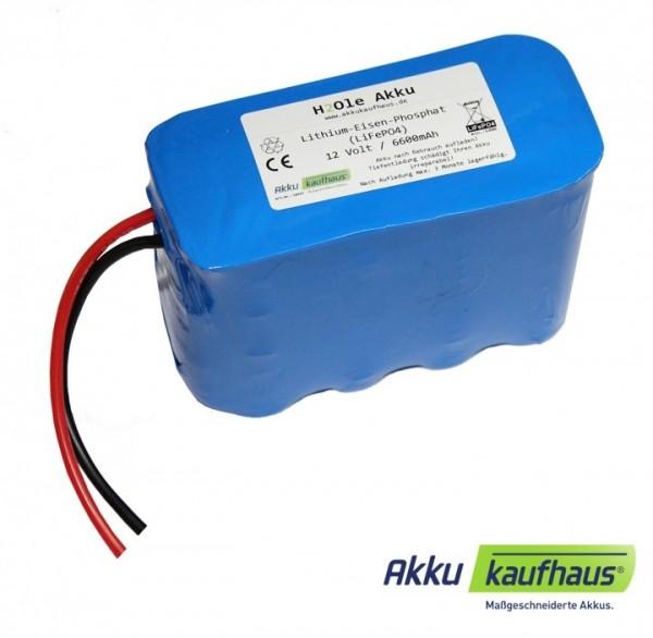 unterbrechungsfreie Stromversorgung (12V) USV mit LiFePo4 - Akku inkl. 12V/12V Ladegerät