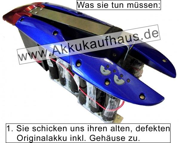 Flyer NiMH - Ebike Akku, Typ 30NT - 10000mAh DPR Ersatzakku für Räder der Flyer F-Serie (F4,F6,F8 et