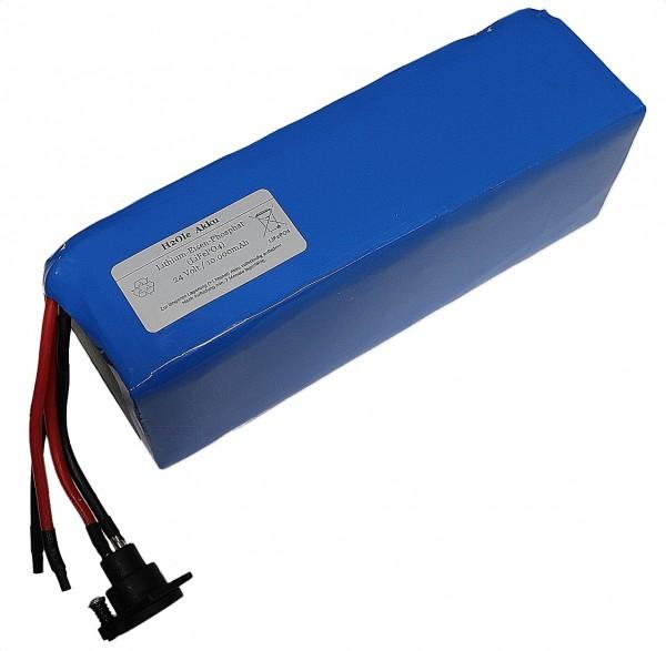 24V / 6,5AH Pegasus Lithiumakku ( LiFe - LiFePo4 ) inkl. Einbau + Ladegerät, Komplettset