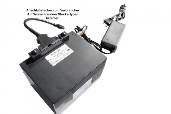 Komplettset: 24V LiFePo4 - Akku inkl. Ladegerät inkl. Entladeanschlußkabel und Gegenstecker
