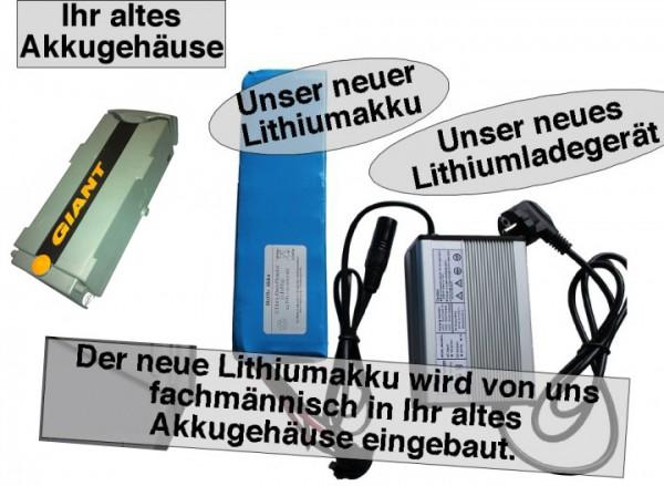 24V / 10AH Giant Twist Lithiumakku ( LiFe - LiFePo4 ) inkl. Einbau + Ladegerät, Komplettset