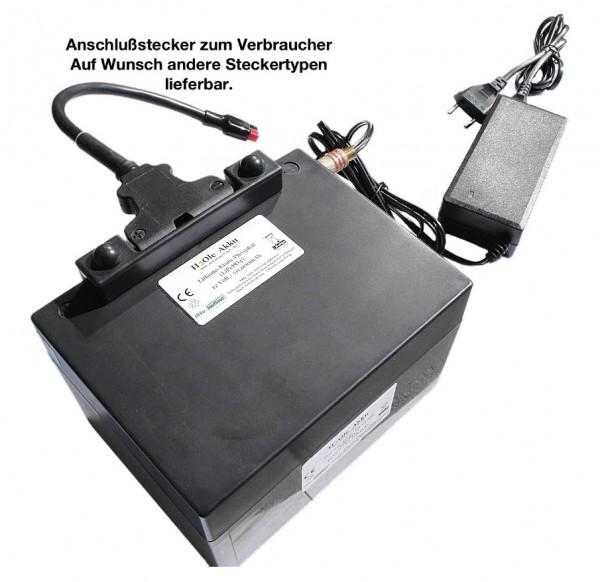 12V (13.2V) LiFePo4 - Akku 25AH im Kunststoffgehäuse